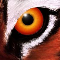 photo de profil de xRaptorV37