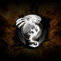 photo de profil de Darkfir