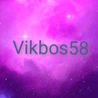 Vikbos58