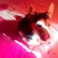 photo de profil de Roscas_47