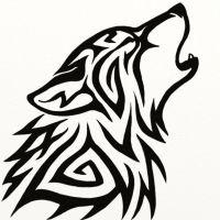 photo de profil de datan.fearless