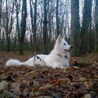 photo de profil de kevkev2703
