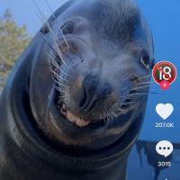 photo de profil de Alpha-_-Z1