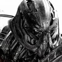 photo de profil de Iron-Knight-du22