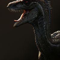 photo de profil de Raptor072