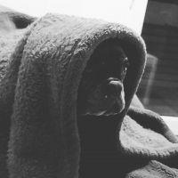 photo de profil de Biliboy22