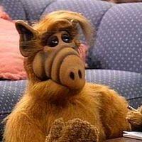 photo de profil de Alf Elf Olf